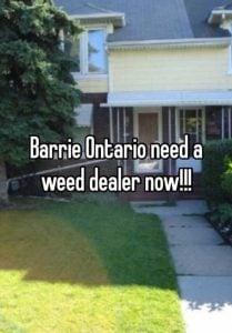 BUY WEED ONLINE BARRIE