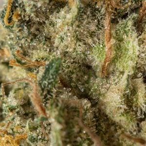 kandy-kush-marijuana-strain-1