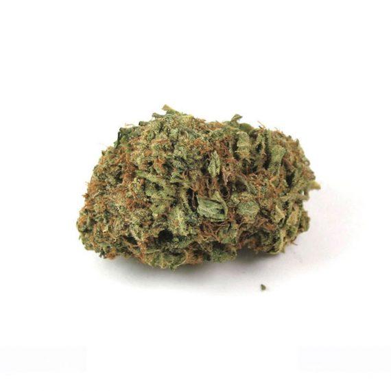 Purple Kush Marijuana