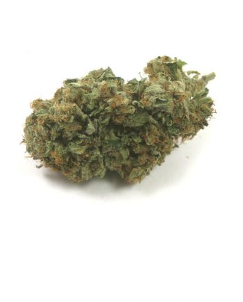 mango-haze-marijuana-strain