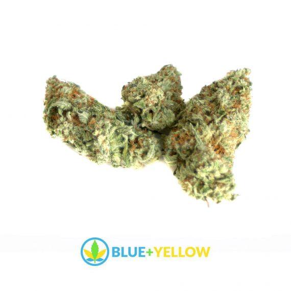 Orange Cookies Marijuana Strain