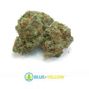 og-kush-marijuana-stain