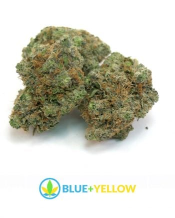 OG Kush Cannabis Stain