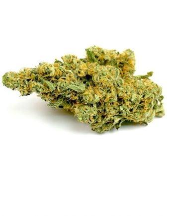 Rare Congolese Marijuana Strain from Online Dispensary Canada