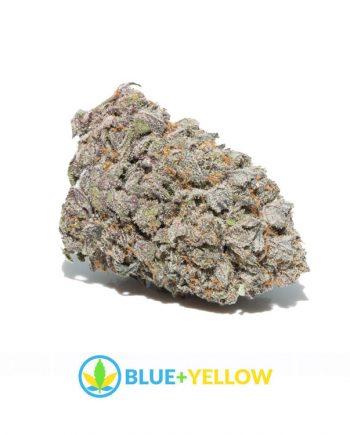 Blue City Diesel Marijuana Strain