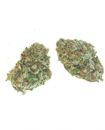 Green Crack from Online Dispensary Canada