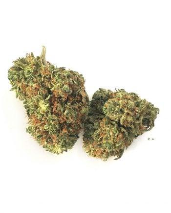 Tuna Kush Marijuana